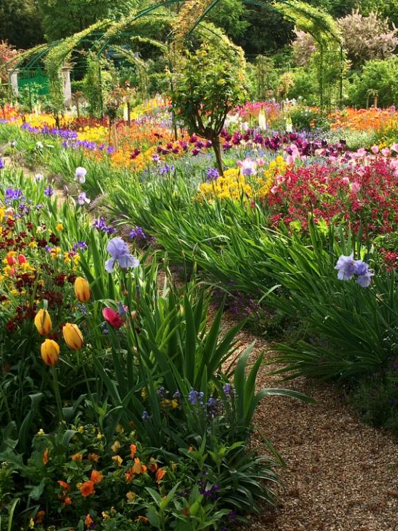 Monet Flower Garden